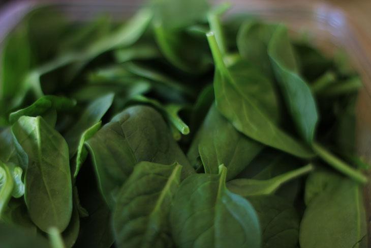 Spinach in Blendtec Blender